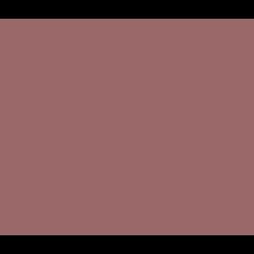 Zahnreinigung und Bleaching